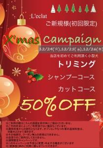 Xmas 50% クリスマス